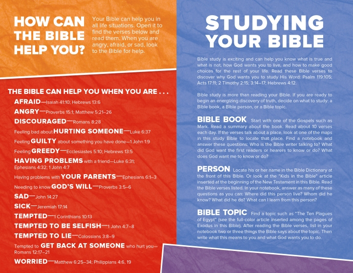CSB Kids Bible Int Sample